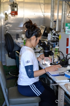 Julie Kuo, a graduate student in the Biological Oceanography lab at MLML, counts the number of zooplankton in a sample of pre-treated ballast water.